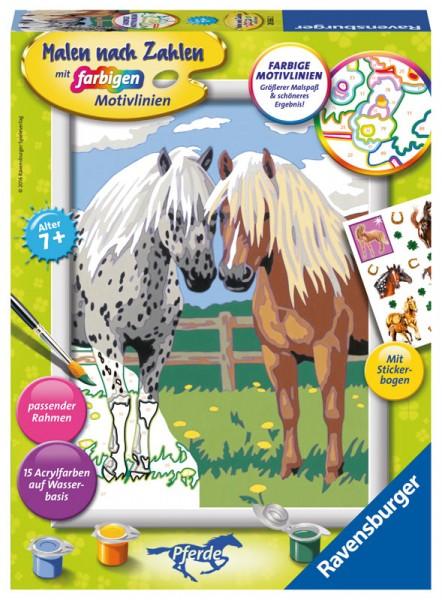 Malen nach Zahlen Glückliche Pferd mit Stickerbogen