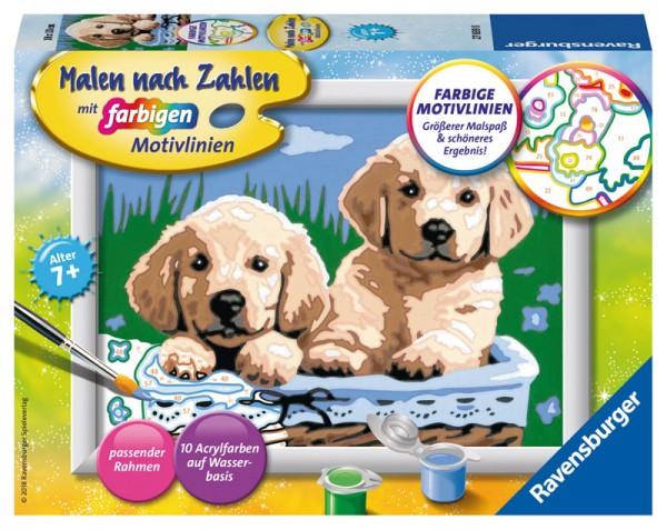 Malen nach Zahlen Süße Hundewelpen
