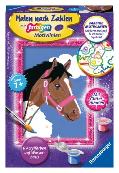 Malen nach Zahlen Pferd mit Glitter-Rahmen