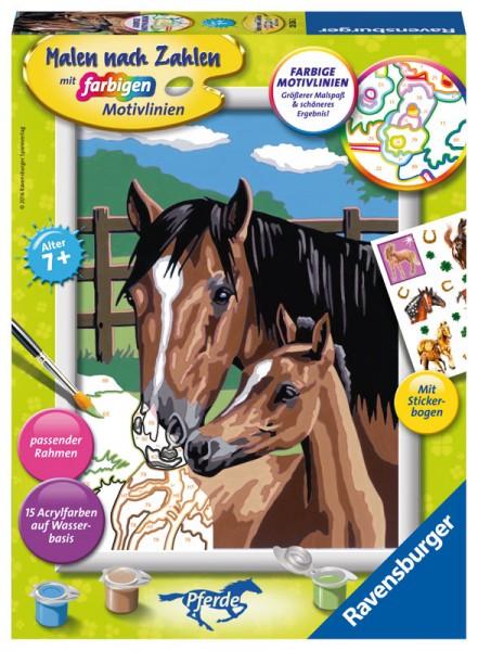 Malen nach Zahlen Pferd mit Fohlen mit Stickerbogen