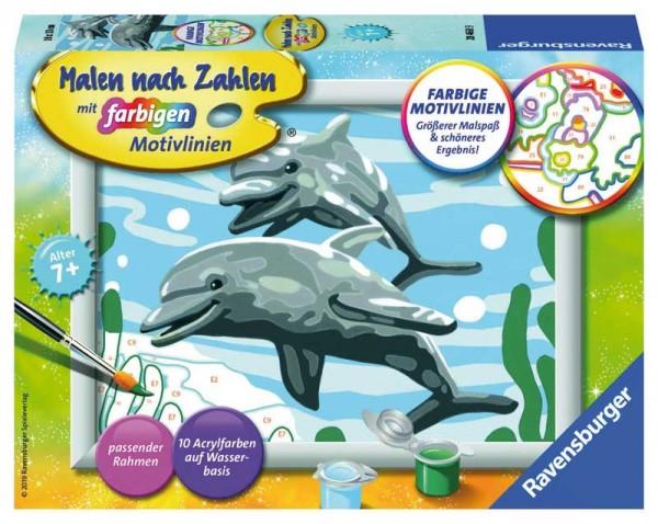 Malen nach Zahlen Freundliche Delfine