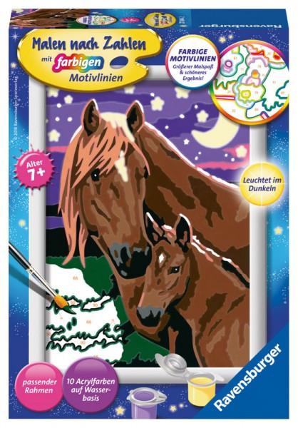 Malen nach Zahlen Pferde